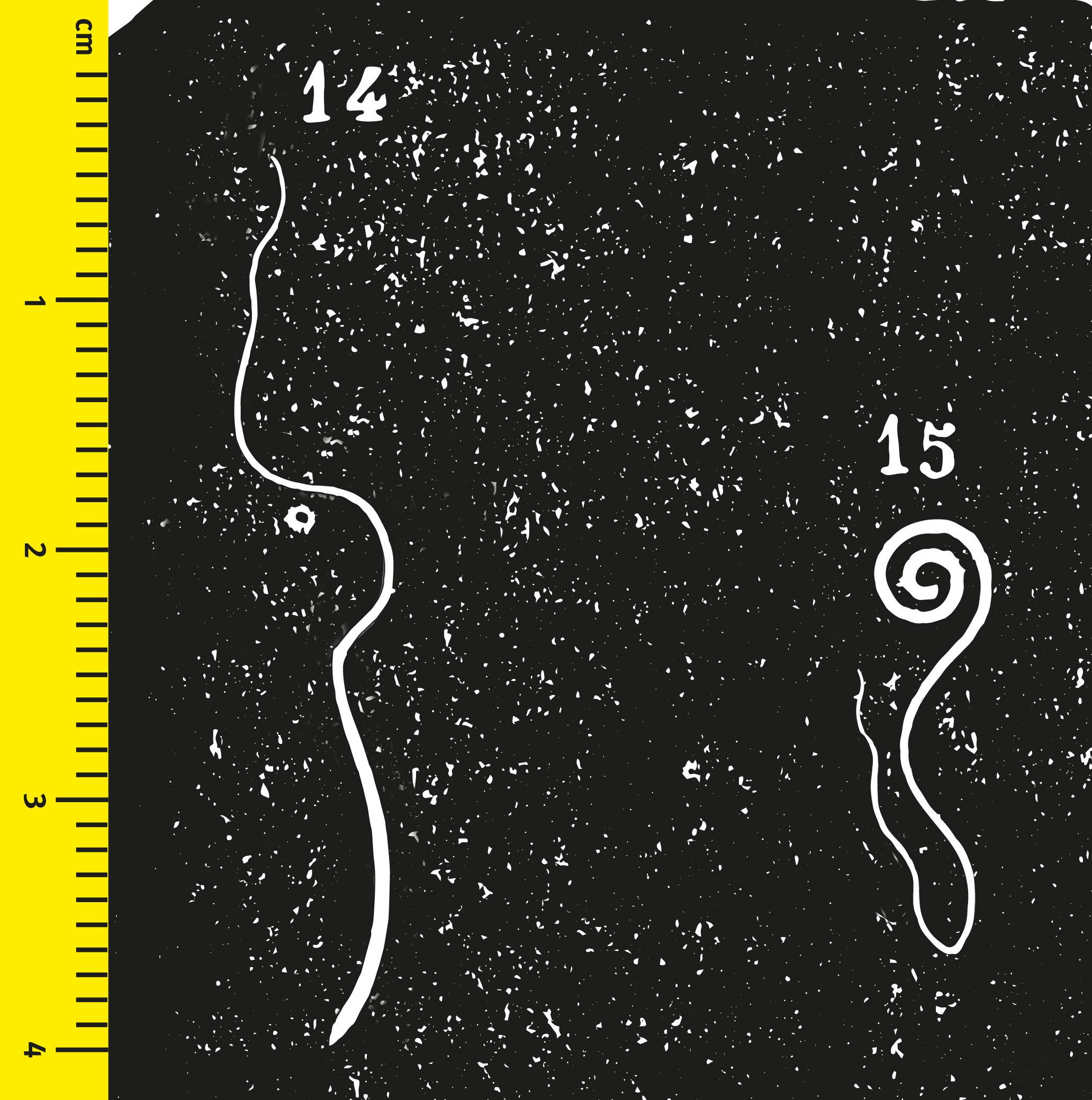 enterobius vermicularis nhg parazita átvitel